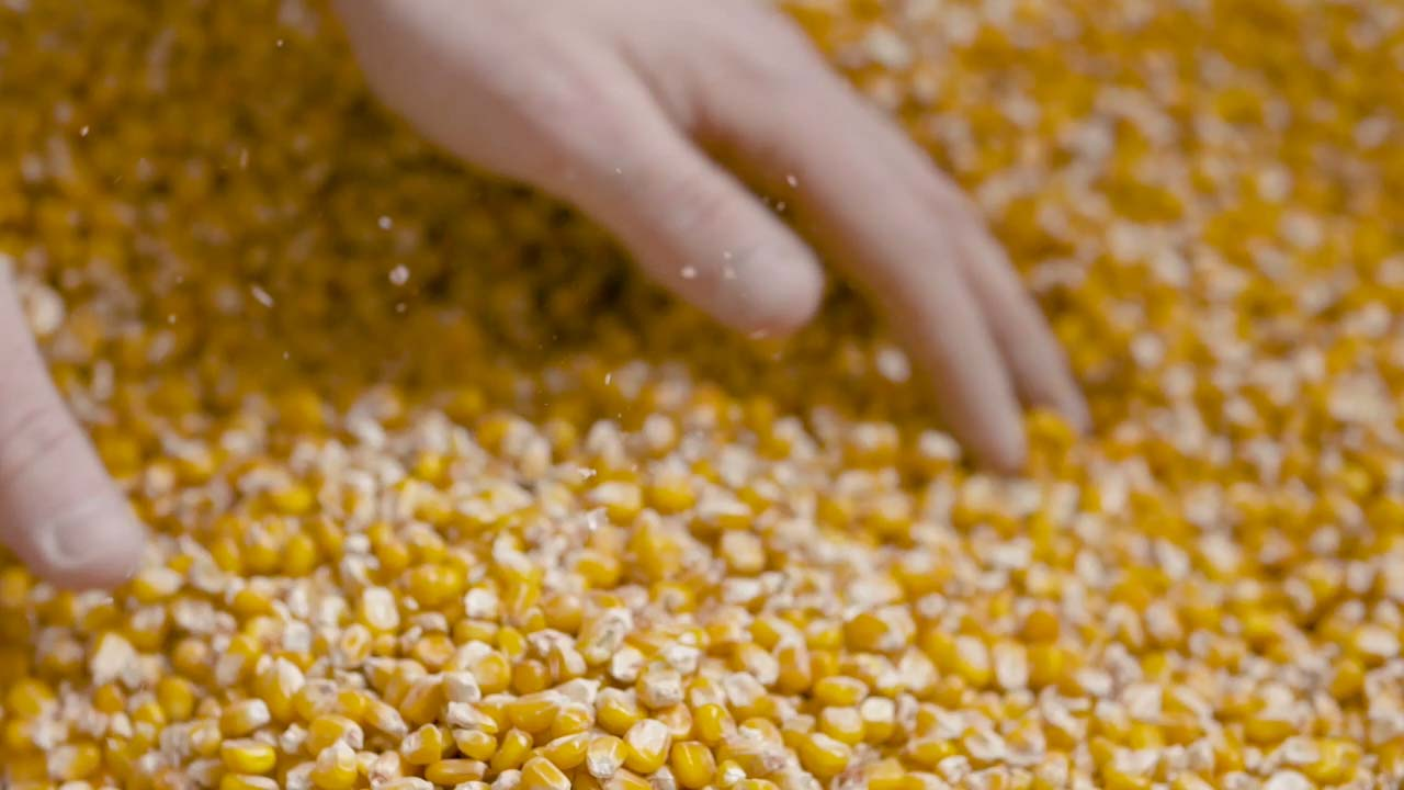 corn refiners association innovating the kernel